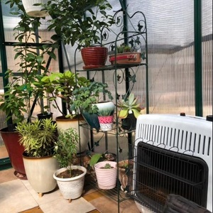 Mr. Heater MHVFB30NGT Greenhouse Heater Review - Heatercamp